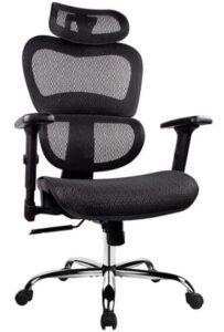 ergonomic office chair with headrest