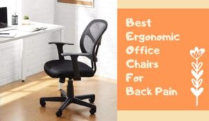 ergonomic chair back support cushion