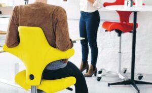 ergonomic chair for lower back pain